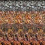 Stereogram by 3Dimka Eight legs